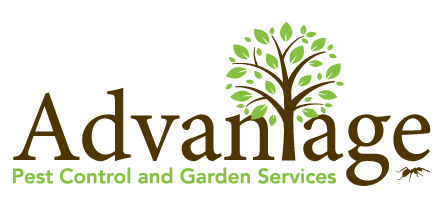 Advantage Pest Control and Garden Services
